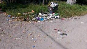 Жалоба-отзыв: Жители улицы Мурманской вынуждены жить среди куч мусора