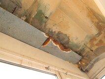 "Жалоба-отзыв: ИП ""Бавинов Салман Дилгам-оглы"" - Гидроизоляция балкона.  Фото №3"