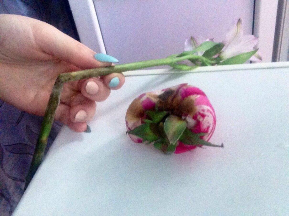 """Жалоба-отзыв: Roseberry Flowers Цветы Шары Бесплатная Доставка Белгород RBFlowers - Заказали первый раз и остались в таком """"восторге"""""""