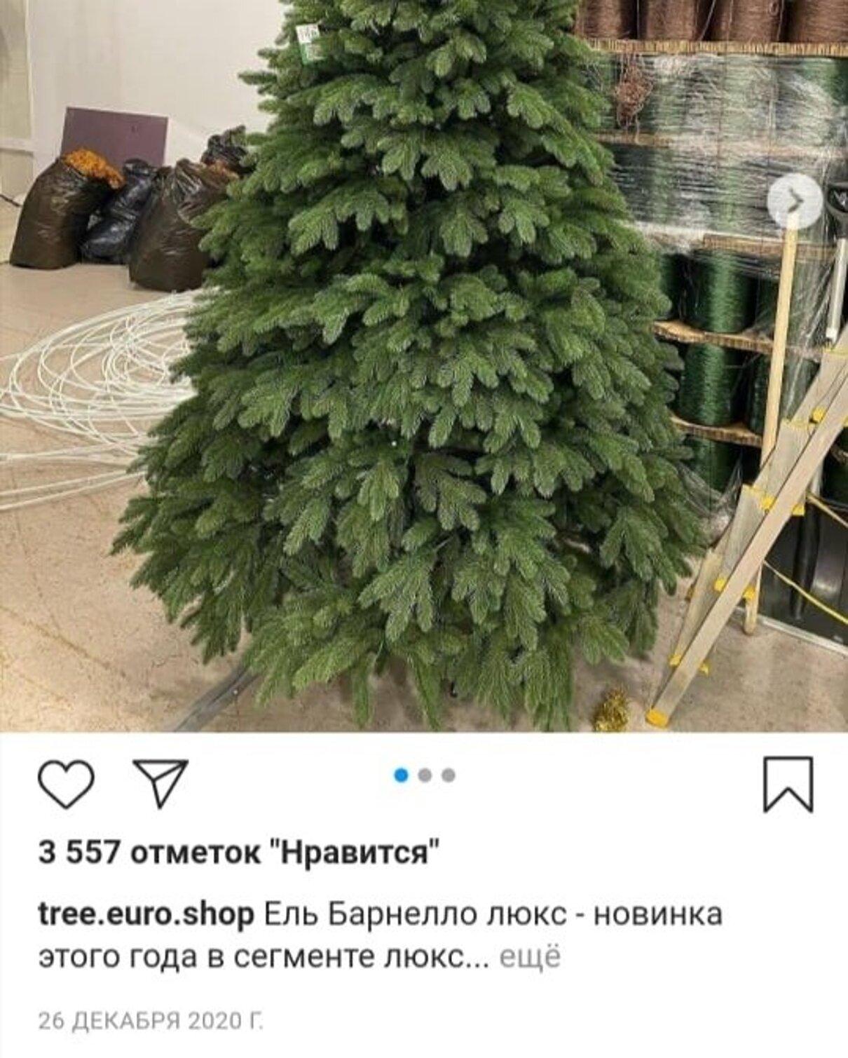 Жалоба-отзыв: www.ёлочки.shop - Мошенники продающие якобы ели.  Фото №3
