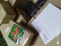 Жалоба-отзыв: ЗАО СДТ - Вместо костюма для охоты прислали мусор и тряпье.  Фото №2